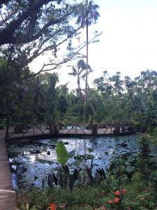 the garden of sleeping giant